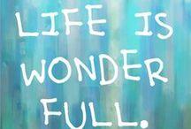 Wonder / Miracle
