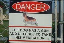 Hilarious Signs.
