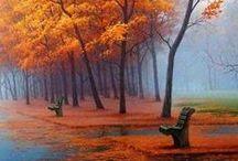 Autumn & Sunset