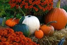 Ready for Fall? / Fall decoration for the home from http://www.kamaleone.com/index2.html