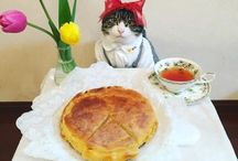Cosplay cat MARO / コスプレグルメ猫のマロちゃんです。食事も美味しそうだしコスプレも似合ってます。