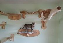 Cat scratchers