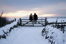 Winter / by Beinnc