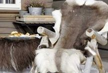 Deer / Deer Hide Inspiration and Genuine SOFT Deer Hides from the Leather Guy