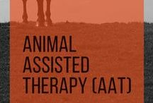 Animal Assisted Therapy (AAT) / Animal-assisted therapy involves animals as a form of treatment. The goal is to improve a patient's social, emotional, or cognitive functioning | www.hawaiianrecovery.com | #addiction #recovery #drugrehab #alcoholabuse #hawaii