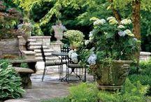 Zahrada, okolí domu