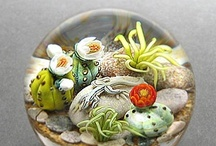 Paperweights / by Tina Brand