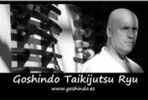 Goshindo Taikijutsu ryu / Artes Marciales