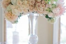 Weddings / Bridesmaid's Gifts