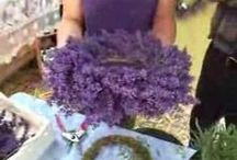 Crafts - Wreaths / How to make all kinds of wreaths with any material you fancy.
