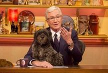 Celebrities and Cairn Terriers / So which famous folk liked or owned Cairns?