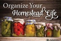 Home Organization and Cleaning / HOME … a way of life. All things HOMEsteading, HOMEkeeping, HOMEschooling, and HOMEindustry. www.MollyGreen.com  / by Molly Green Magazine