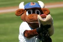 Wool E. Bull / by Durham Bulls