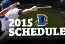 Tickets & Promotions / by Durham Bulls