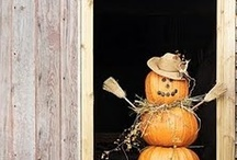 Pumpkins & Cider  / Inspiration for mixed media class.