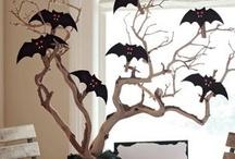 Halloween! / by Sandra Rivera
