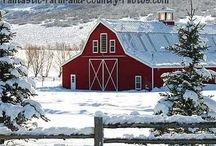 ❤ ~ Barns ~ ❤ / by Julie  ~  By the Sea  ~