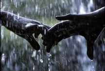 The beauty in rain