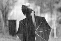 Rain / esplorazioni nella pioggia