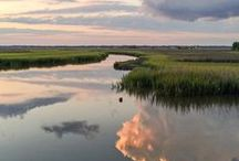 lovely charleston / our lovely home sweet home
