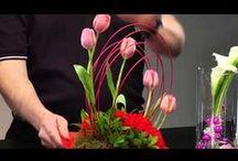 Floral Design Videos / How to videos for floral design...