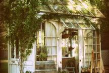Greenhouses, Garden Sheds, Cold Frames / by Deb Arends-Bush