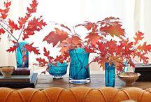 Fall / by Charity Allen