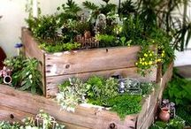 *Gardening*