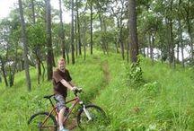 Mountain Biking / Various mountain biking photos around Thailand.