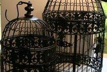 *Birdcages*