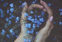 Foliage & Flowers - simple pleasure