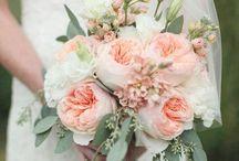 Flowers: David Austin Rose