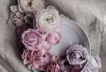 Colour Palette: Soft Elegant Lilacs