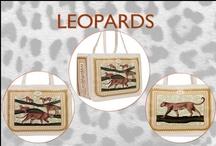 Leopards Series