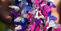 Boeketten - Bouquets / Bridal Bouquets | Bruidsboeketten
