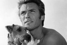 Clint Eastwood + animals