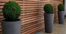 Garden & Pool / Garden & Pool, designs, décor and ideas