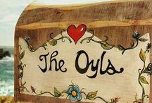 The Oyls Cove