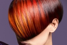 our passion ... your hair