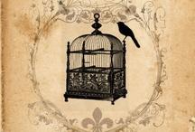 Scrap / by Flo. Des coeurs, des anges, pour Aymeric