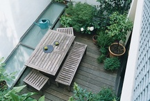 Tuin / by Mister West