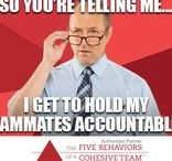 Accountability - Fourth of the Five Behaviors of a Cohesive Team