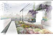 Landschaftsarchitektur & Außenraumgestaltung / Architektur, Landschaft, Gestaltung, Darstellung, Außenraum