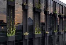 Fassadenbegrünung / Fassaden, Architektur, Pflanzen, Begrünung