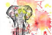 indyjskie słonie