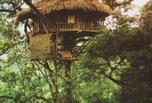 Nature houses and decor