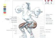 Fitness Butt
