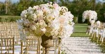Aisle Perfection / Inspiration for wedding aisles, Including flower arrangements, chair decor, creative runners and ideas for outdoor weddings