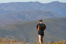 CARRERA DE MONTAÑA EL ESPINO / La Carrera de Montaña El Espino es una prueba que se celebra en El Bierzo en el mes de septiembre. Los corredores disfrutarán de 25 km. atravesando Los Ancares y los andarines de 10 km. Más información en http://www.bierzonatura.es
