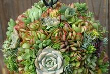 DIY Projects / DIY Projects for Home and Events